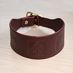 Boxed Bugs Leather Slip Collar (2 inch wide)