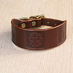 Boxed Bugs Leather Buckle Collar (1.5 inch wide)