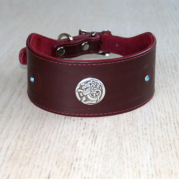 Celtic Conchos buckle collar (2 inch wide)
