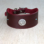 Celtic Conchos Leather Buckle Collar (2 inch wide)