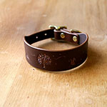 Buckle Collar Autumn Woodland