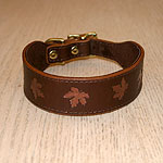 Painted Maple Leaves Leather Buckle Collar (1.5 inch wide)