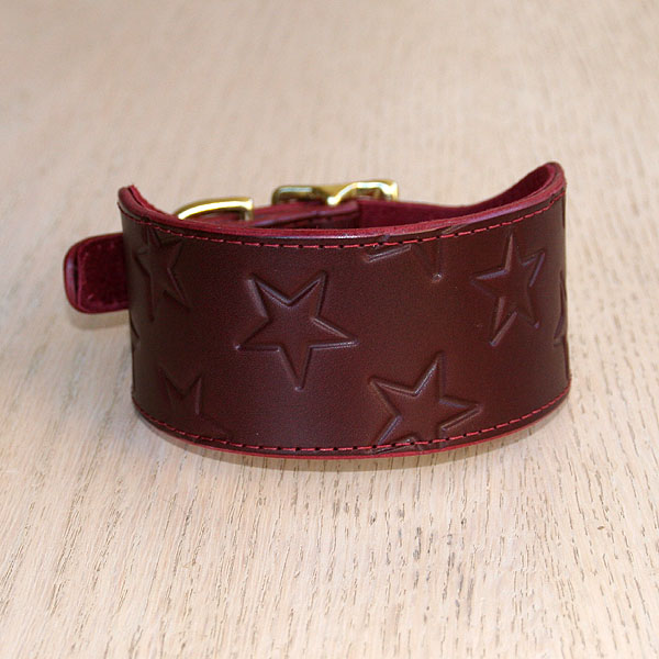Stars Leather Buckle Collar (2 inch wide)