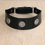 Conchos Leather Martingale Collar (2 inch wide)