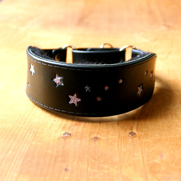 Shimmering Galaxy Stars Leather Martingale Collar (1.75 inch wide)