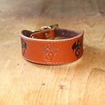 Painted Dragons Whippet Buckle Collar (1.5 inch wide)