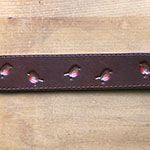 Painted Robin Whippet Buckle Collar (1.5 inch wide)
