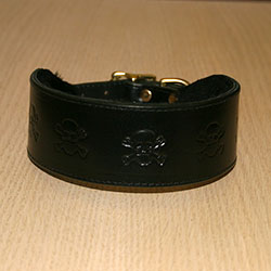 RTB Skulls Buckle Collar (2 wide)